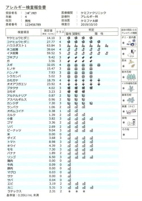 dshoukokusyo_02